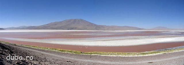 Laguna Colorada, 4270m altitudine