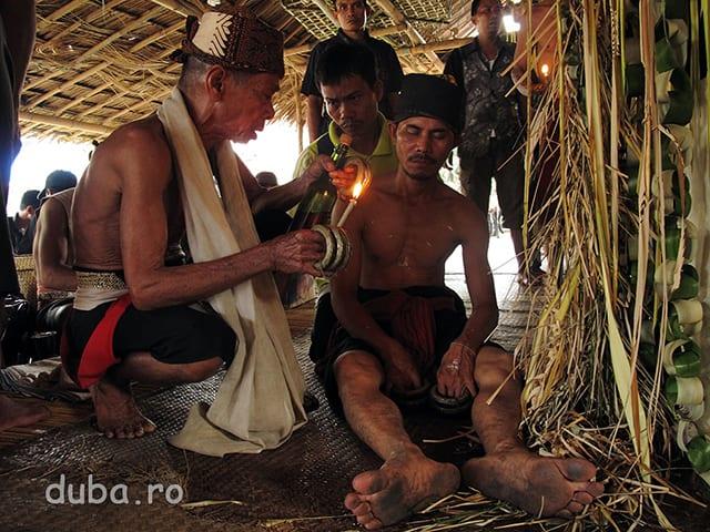 Un dayak este trezit la viata cu ajutorul vrajilor si a unei licori puternice - scena dintr-o legenda a dayacilor halong. Ceremonia este o inlantuire de puneri in scena a povestilor din mitologia clanurilor amestecate cu actualati si cu episoade de comunicare cu lumea spiritelor.