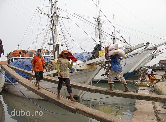 In portul Kali Mas (Surabaya) hamalii incarca manual marfa in corabii. In afara de docul din beton si zgomotul de la motoarele camioanelor atmosfera pare neschimbata de secole.