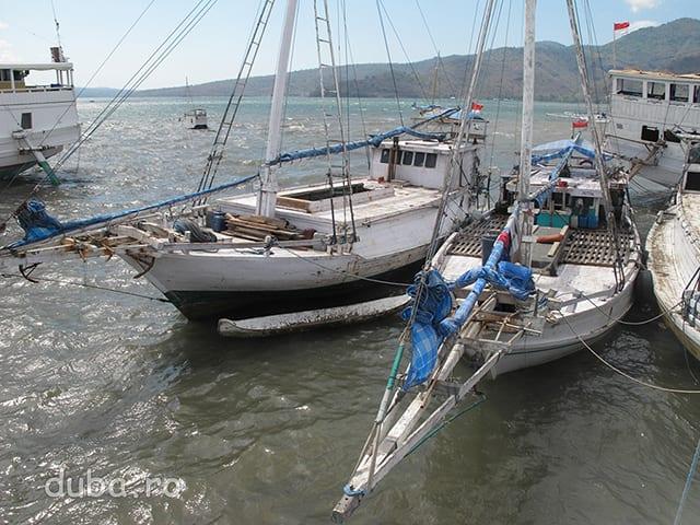 In Portul Bima. In Indonezia mai circula barci pentru marfa sau pentru pescuit, construite complet din lemn, care daca vremea le permite folosesc panzele pentru a naviga.