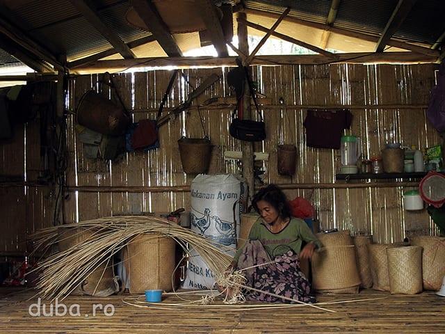 Una dintre indeletnicirile de baza ale femeilor, pe langa gospodarit, este impletitul de cosuri si rogojini din ratan sau bambus. Impletiturile sunt printre putinele produse pe care dayacii le pot vinde in satele de jos. Impletiturile din bambus sunt mai ieftine, dar cele din ratan tin mai mult, iar rogojinile din ratan tin mai bine de cald decat cele din bambus.
