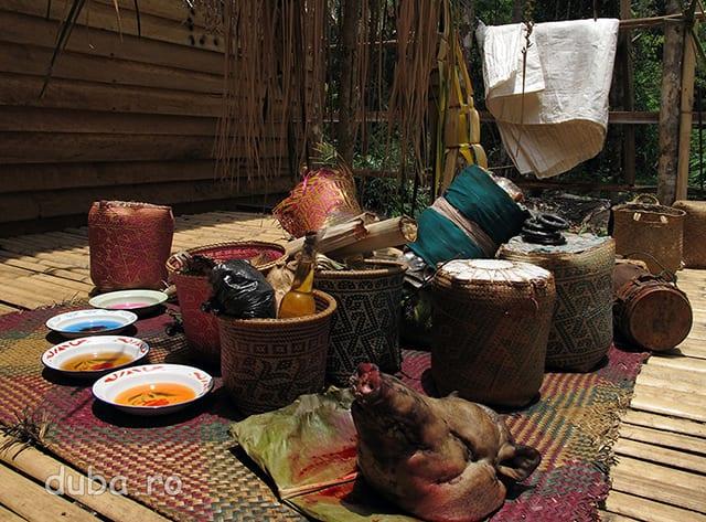 Pentru ca rugamintile dayacilor sa se adevereasca, spiritelor trebuie sa li se aduca ofrande pe masura. Un cap de porc, sticle cu ulei, farfurii cu suc, cosuri cu orez si banane, batoane de lamang sunt asezate la baza unui tiang babuah - un stalp din bambus de care sunt atarnate frunze de palmier prin intermediul carora samanii iau legatura cu spiritele.