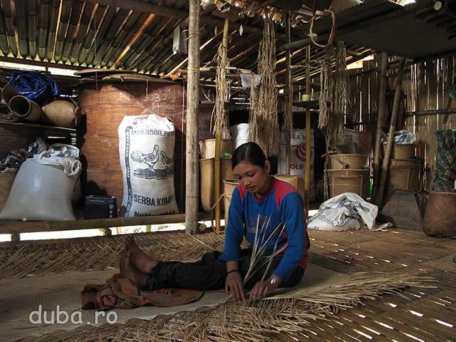 Casele tipice ale dayacilor de aici, ca dealtfel si din alte zone izolate din Indonezia, constau dintr-o singura incapere, care e depozit, dormitor, spatiu de oaspeti si bucatarie. Nu exista paturi, ci doar locuri de dormit, fiecare isi intinde rogojina unde i se potriveste. Casele construite din bambus, cu acoperis din bambus sau din frunze si ridicate pe picioare sunt foarte racoroase si uscate. In plus fumul de la vatra de foc alunga tantarii. Raul de langa casa / sat tine loc de veceu, baie si spalatorie. In toate casele, din tavan atarna sfori din ratan sau bambus pentru impletituri. Peretii sunt aproape tapetati cu cosuri. Butoiul mare, din stanga femeii e facut dintr-o coaja de copac si e folosit pentru depozitat orezul.