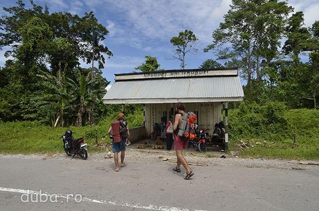 Tura de trekking se incheie la Halta Hualu, pe soseaua din Nordul Seramului, la vreo 3km de satul Huaulu. Din halta vom lua un camion pentru a merge mai departe.