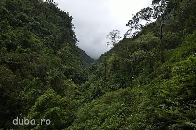 La o ora de mers din Sinahari intram pe valea ce duce pana-n saua pe unde vom traversa creasta.