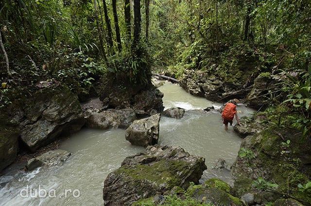 """Un curs de apa dintre Maraina si Salumena unde ne-am ratacit. Intre sate sunt locuri unde oamenii merg sa """"bata sago"""". Cand ne explica pe unde e drumul, loclanicii nu prea iau in considerare si potecile spre locurile de """"batut sago"""" care pentru ei sunt evidente."""
