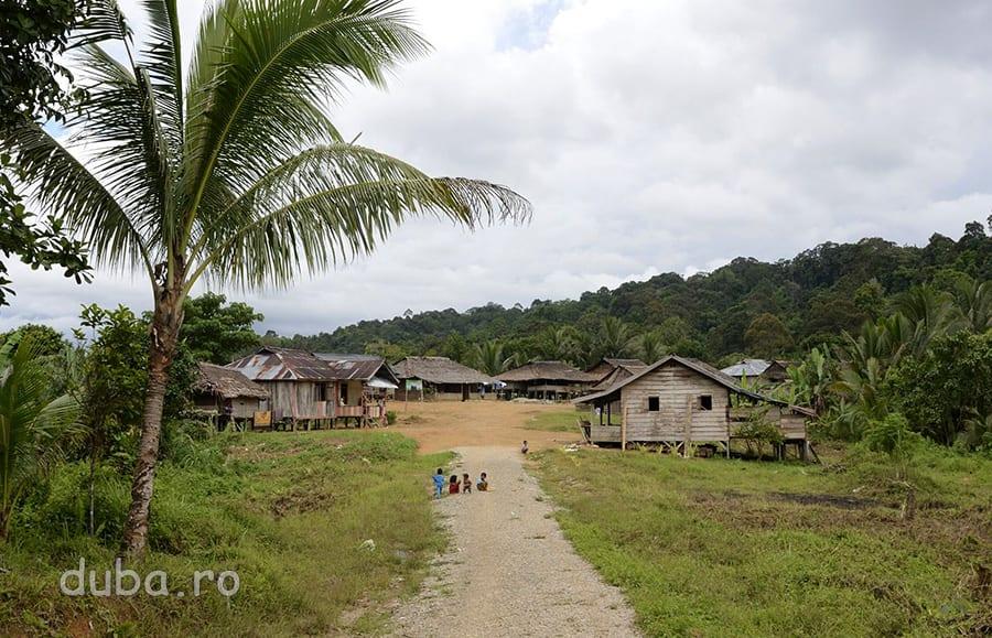 Drumul spre Huaulu, un sat de la granita de Nord a Parcului National Manusela, din Seram. In 2010 a fost construit un drum pentru masina, de la sosea de pe coasta de Nord a insulei pana in Huaulu, care inainte era accesibil doar pe o poteca prin jungla. Drumul s-a oprit la intrarea in sat si tot acolo s-a oprit si civilizatia care l-a construit. Locuitorii din Huaulu, un grup al tribului Naulu, continua sa traiasca in principal din ce le da padurea si pastreaza credintele animiste.