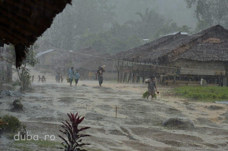 O ploaie torentiala, obisnuita, in Huaulu. Pe partea de Nord a Seramului, se apropie musonul si aproape in fiecare dupamasa satul este spalat de ploaie.