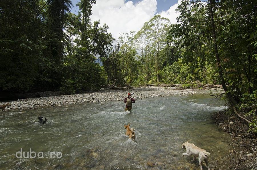 Impreuna cu Buang si cainii lui, merg spre unul dintre locurile de vanatoare ale clanurilor naulu.