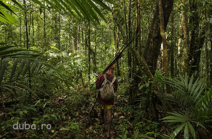 Buang se duce tot mai adanc in padurea lui Kaitahu Upuan, pentru a vana cerb, mistret, sau cassowari. Dotat cu o maceta, un arc, cinci sageti si o sulita pentru pesti si raci, vanatorul sta si cate 10 zile in jungla, timp in care se descurca cu ce-i da padurea.