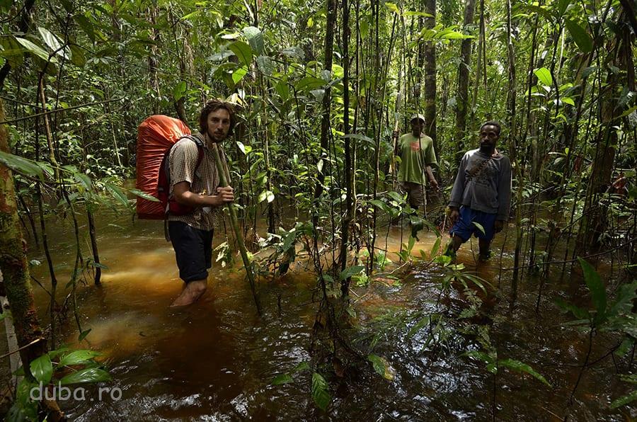 În apropiere de locul lui Gohon. Unde dădeam peste apă curgătoare, cum e în imaginea asta, ne umpleam și bidoanele pentru băut. Da, cât am umblat prin Papua, am băut mereu apă de culoarea ceaiului. De fiert nu se punea problema, ne-ar fi luat o veșnicie, că beam multă apă în atmosfera de saună de acolo. Un filtru ar fi fost bun, dar am supraviețuit și fără.