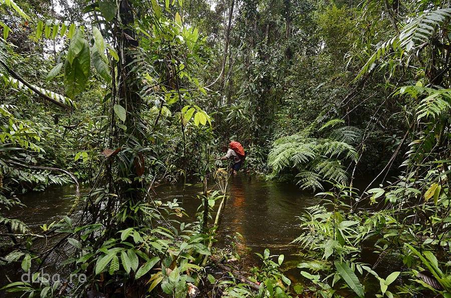 Între casa lui Gohon și cea a vărului lui, cu BBCu, poteca merge pe lângă un râu meandrat, pe care-l tot traversăm.