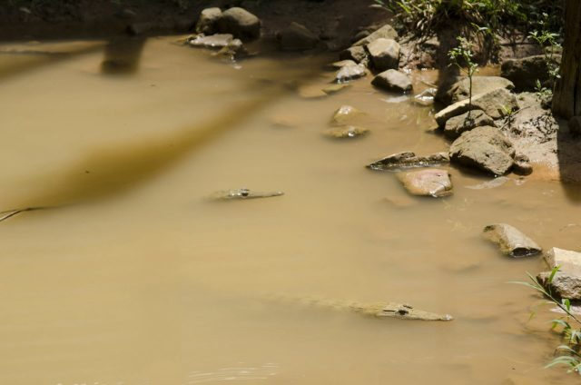 21_may_river