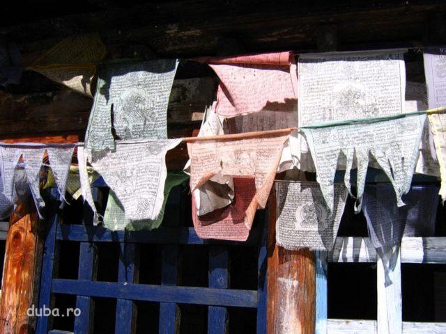 51_nepal