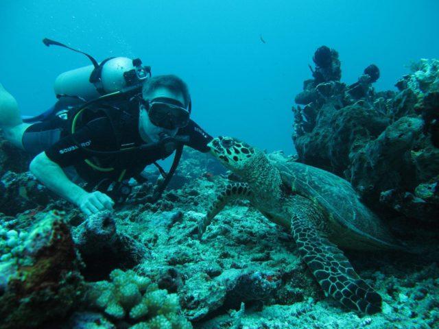 scuba-lombok052