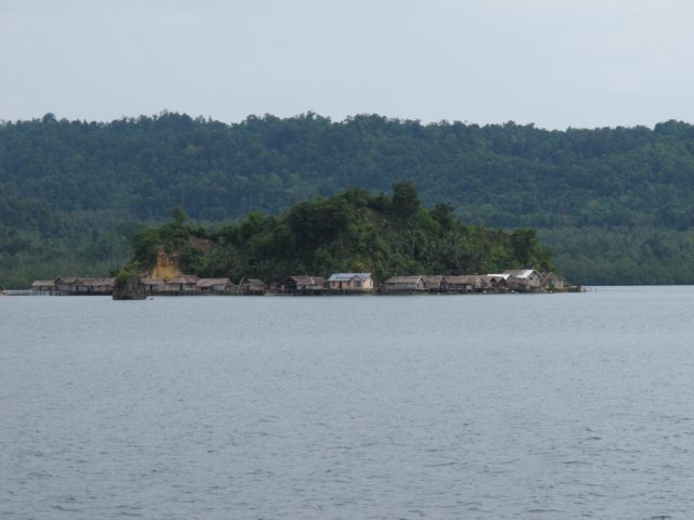 sulawesi-togean017