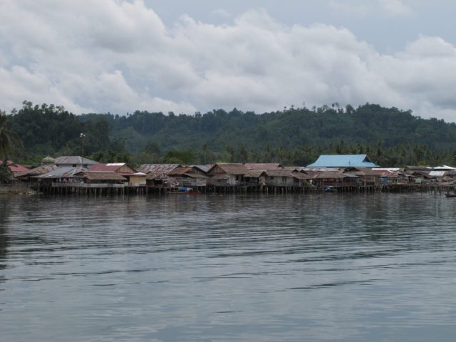 sulawesi-togean022